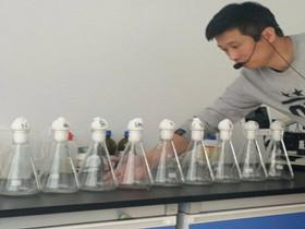 菇行天下液体菌种培训第19期(4.14)开始报名