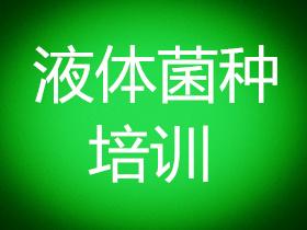 云南省液体菌种培训班(云南省液体菌种培训学校_云南省液体菌种培训基地)哪里好?
