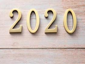 2020年种什么菇能挣钱?——写在元旦
